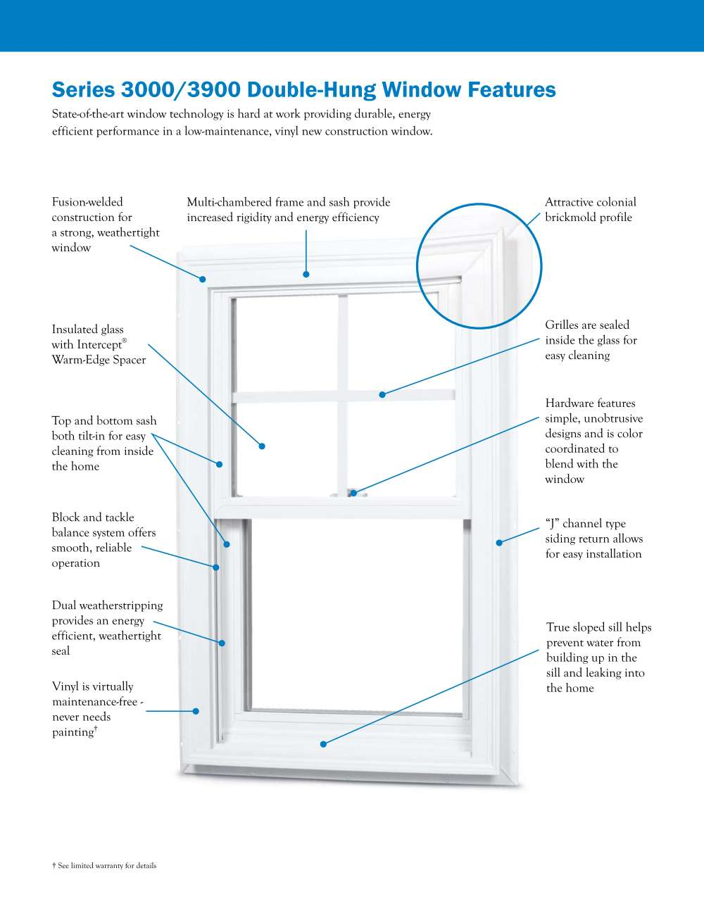 silverline 3000 series double hung windows white instock sale
